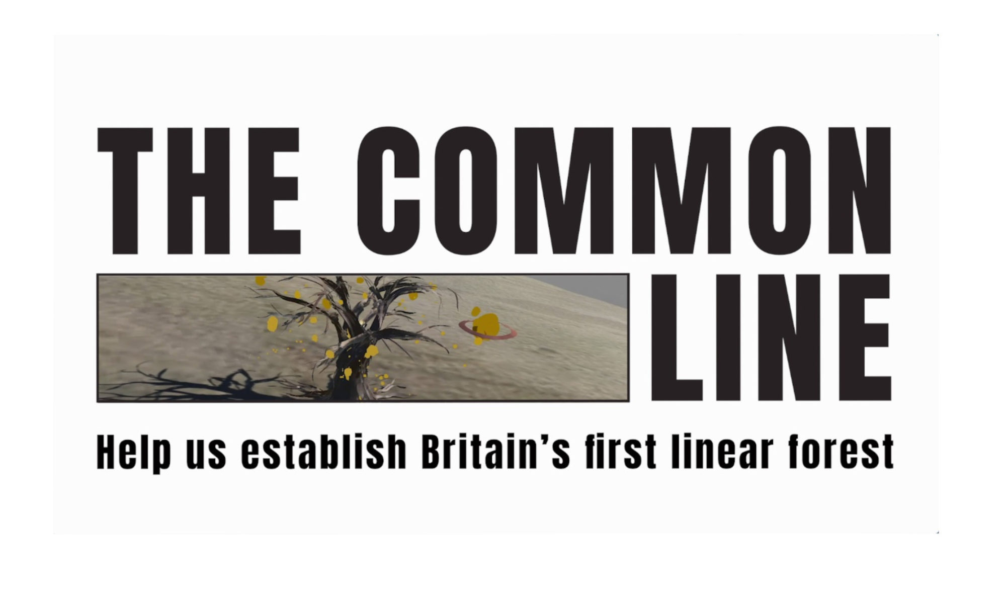 The Common Line